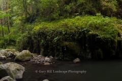 Bunyip Falls