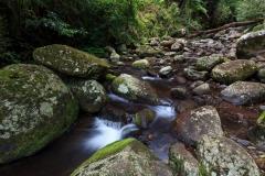 Picnic Rock Cascades