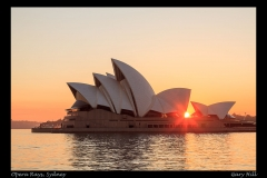 Opera Rays